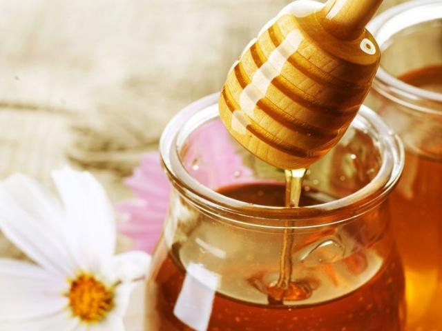 khasiat dari madu