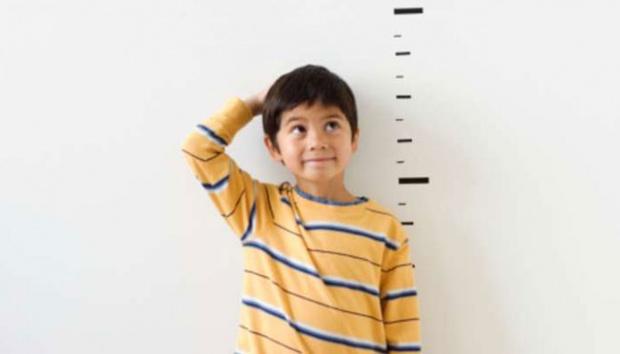 tinggi badan anak 2 tahun